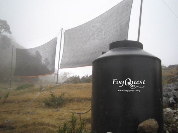 FogQuest9s-600x450